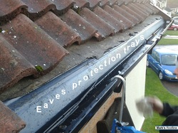 Products Mark S Roofline